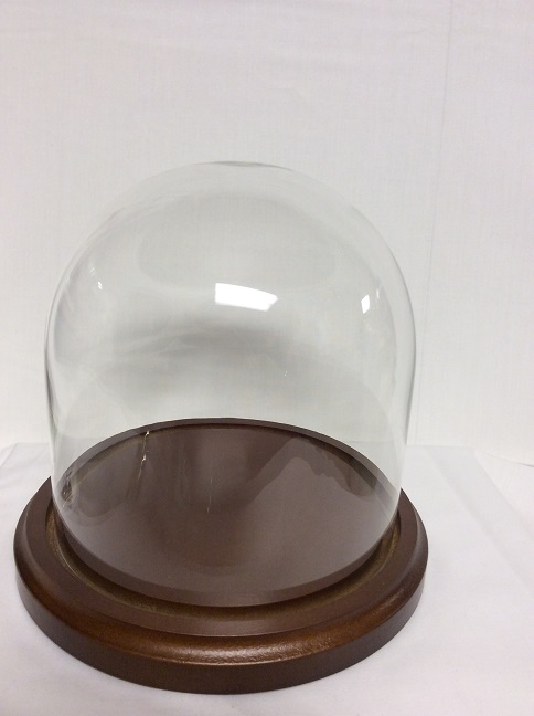 "Glass Dome - 12"" x12"" -"